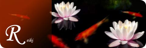 image of a beautiful waterlily flowers and goldfish in dark pool